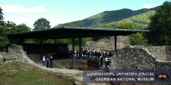 Dmanisi Museum-Reserve